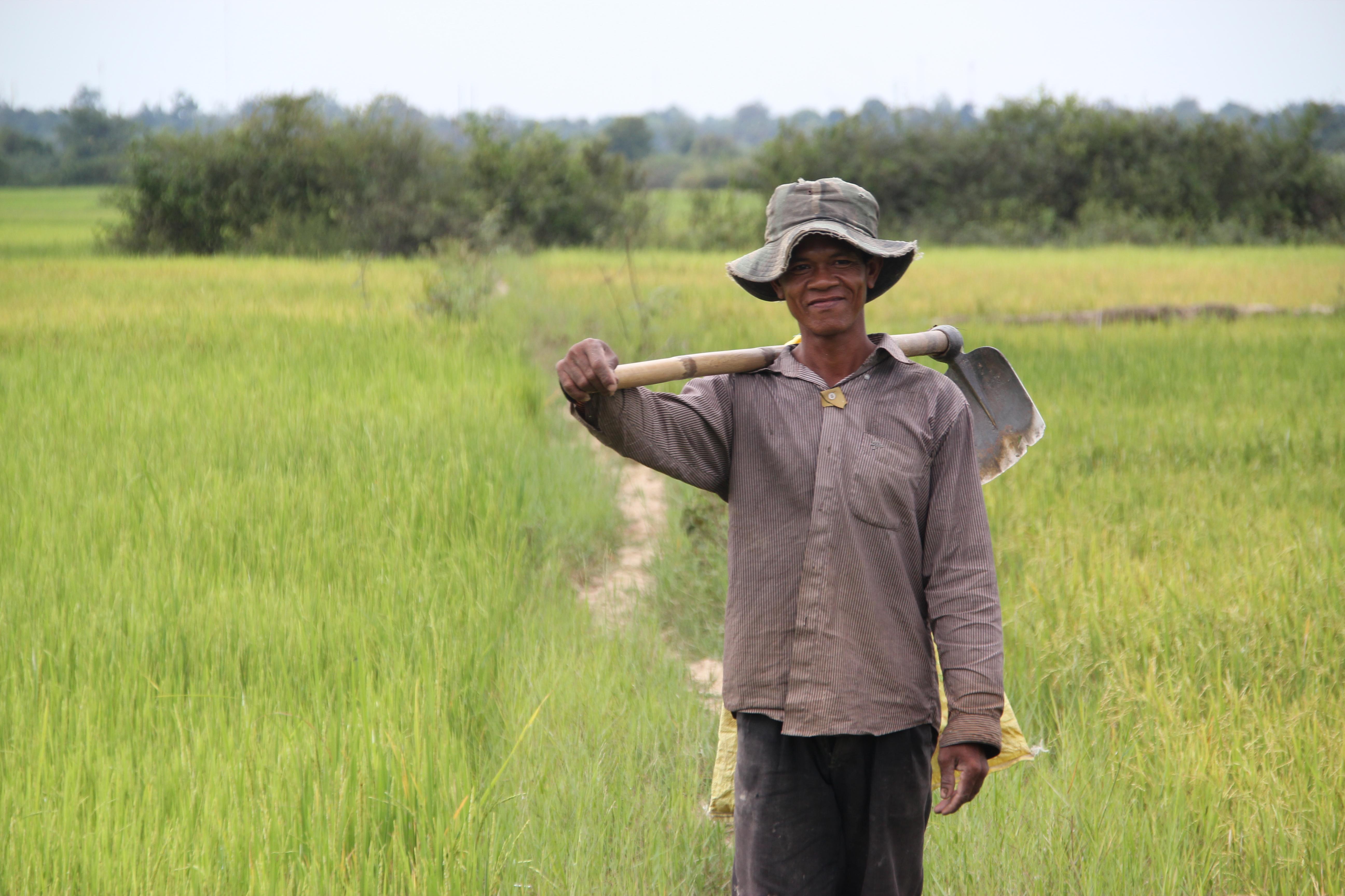 Cambodia Rice Farmer