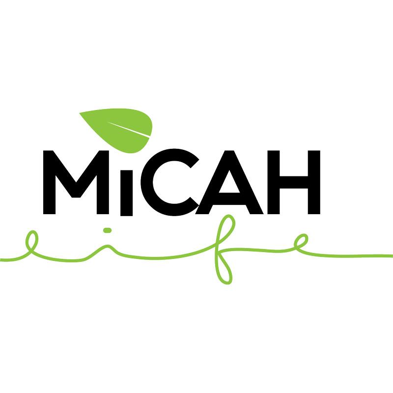 Micah Life