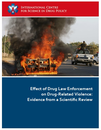 ICSDP_Violence_Report_-_front_cover.jpg