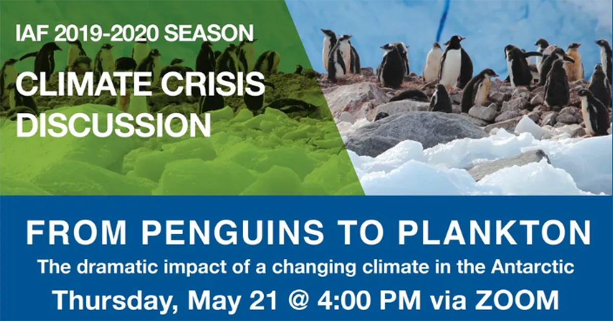 From penguins to plankton climate crisis discussion