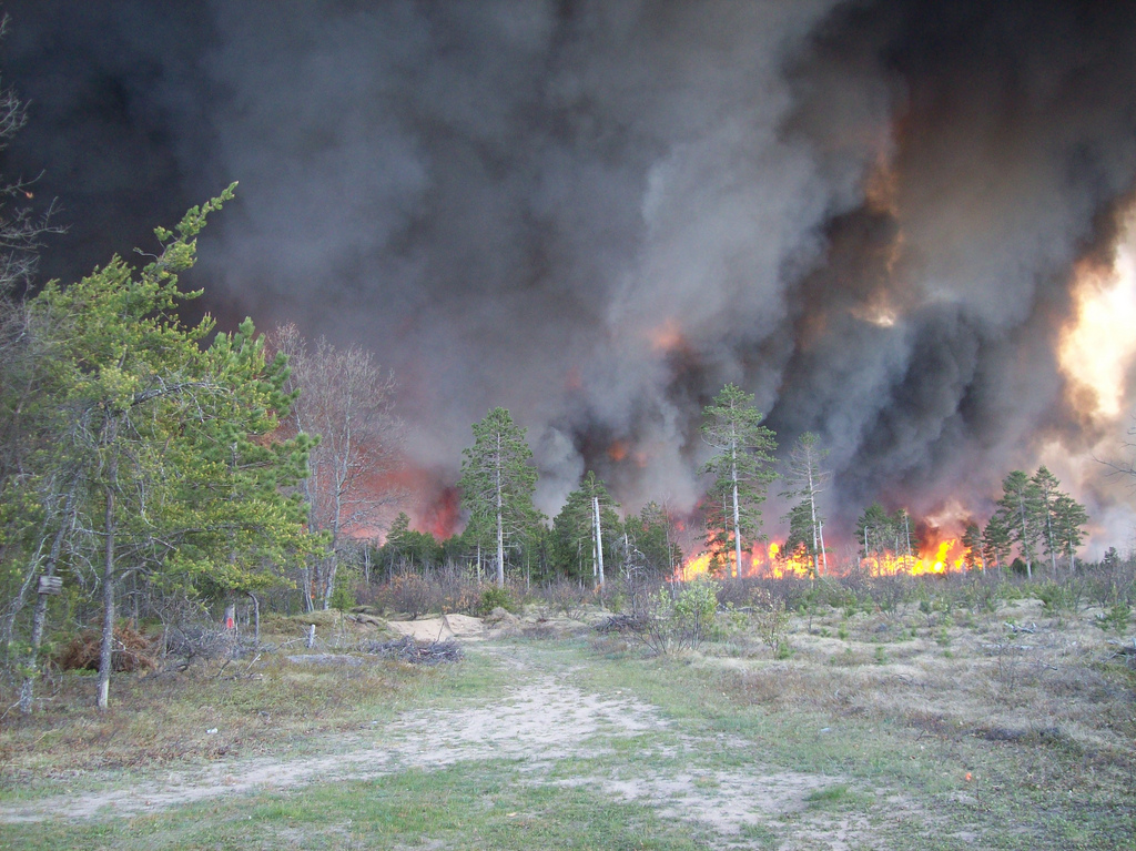 Fire_in_Huron-Manistee_National_Forest.jpg