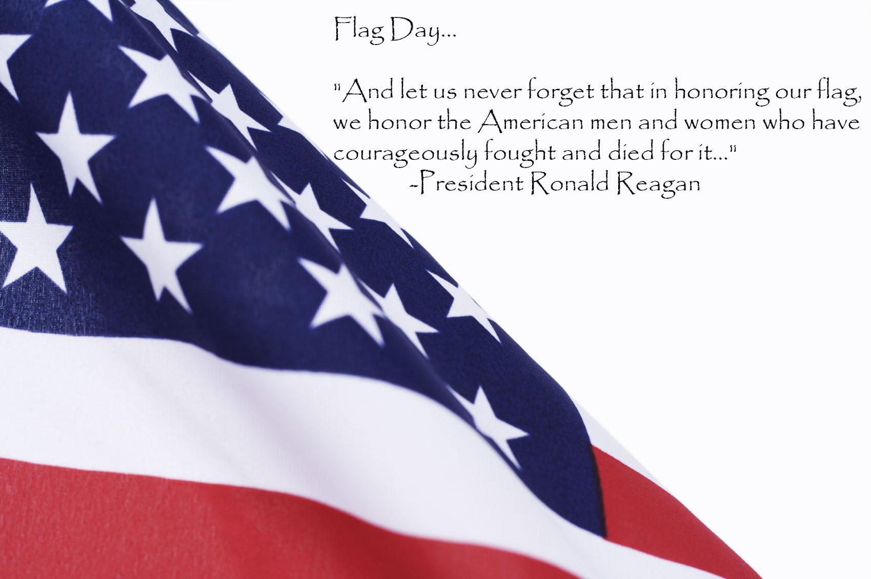 flagday2013.jpg