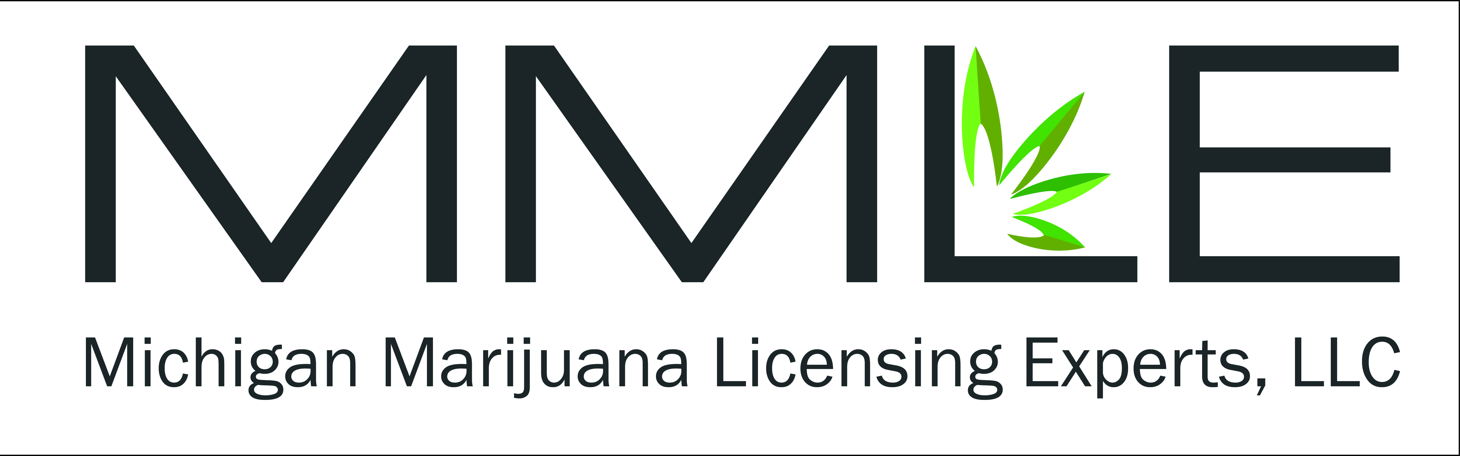 MMLE_Logo__Licensing.jpg
