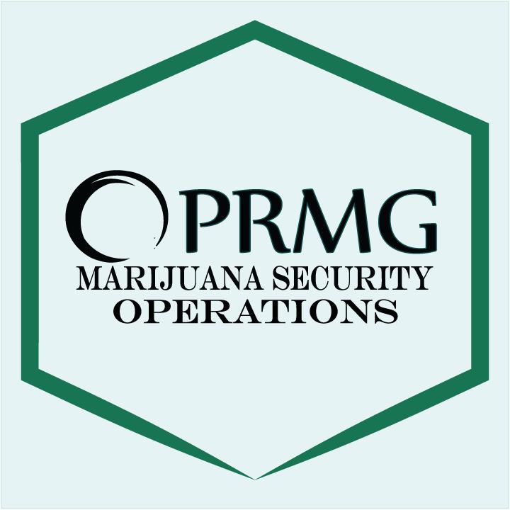 prmg-mso2-720.png