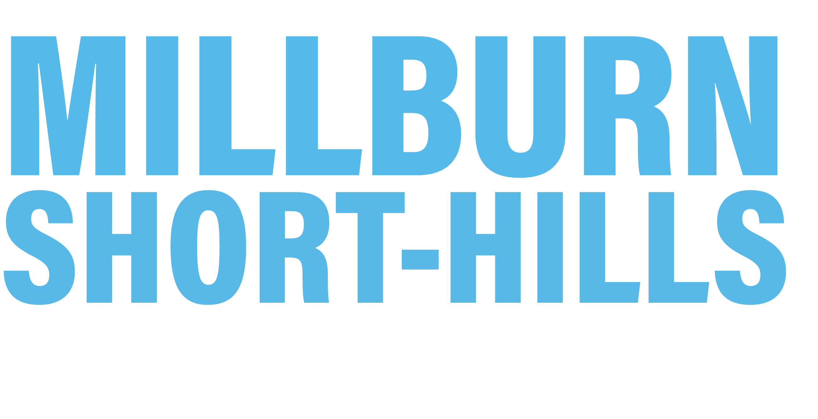 Millburn Democratic Committee
