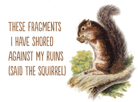These fragments I have shored against my ruins (said the squirrel)
