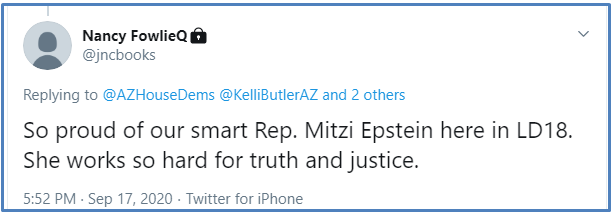 Tw_Mitzi_for_truth_and_justice_C-UI_reply_NancyF-2020-0918.png