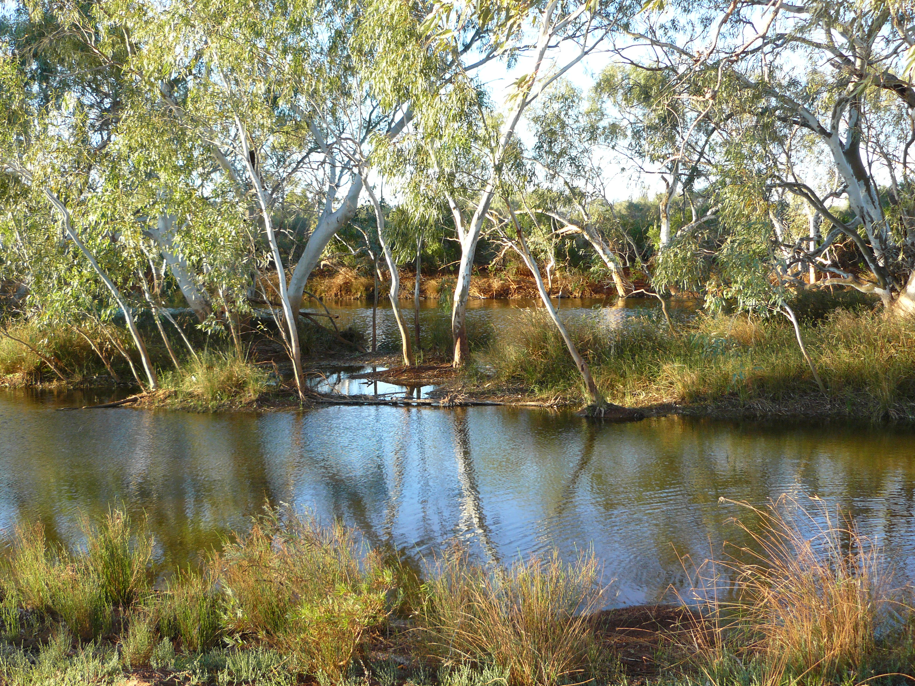 Waterhole at the proposed Cobra Nation Park in the Upper Gascoyne. Photo by David Blood