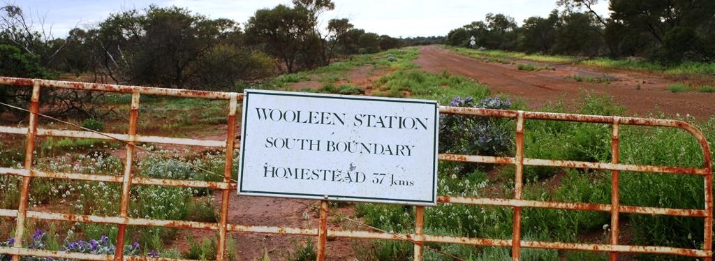 Visit to Wooleen