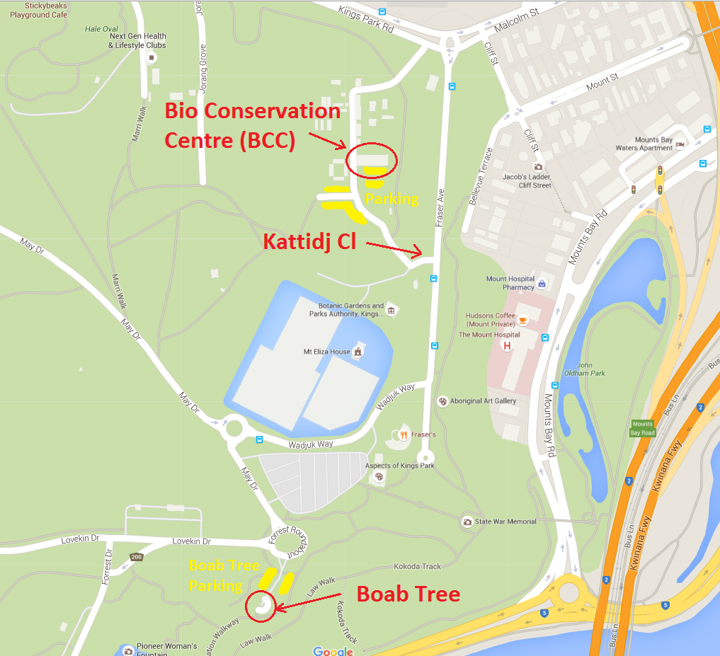 map_for_kings_park.png