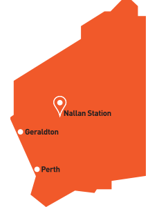 Map - Nallan Station