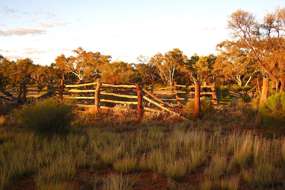 Old cattle yards at ex Doolgunna (photographer David Blood)