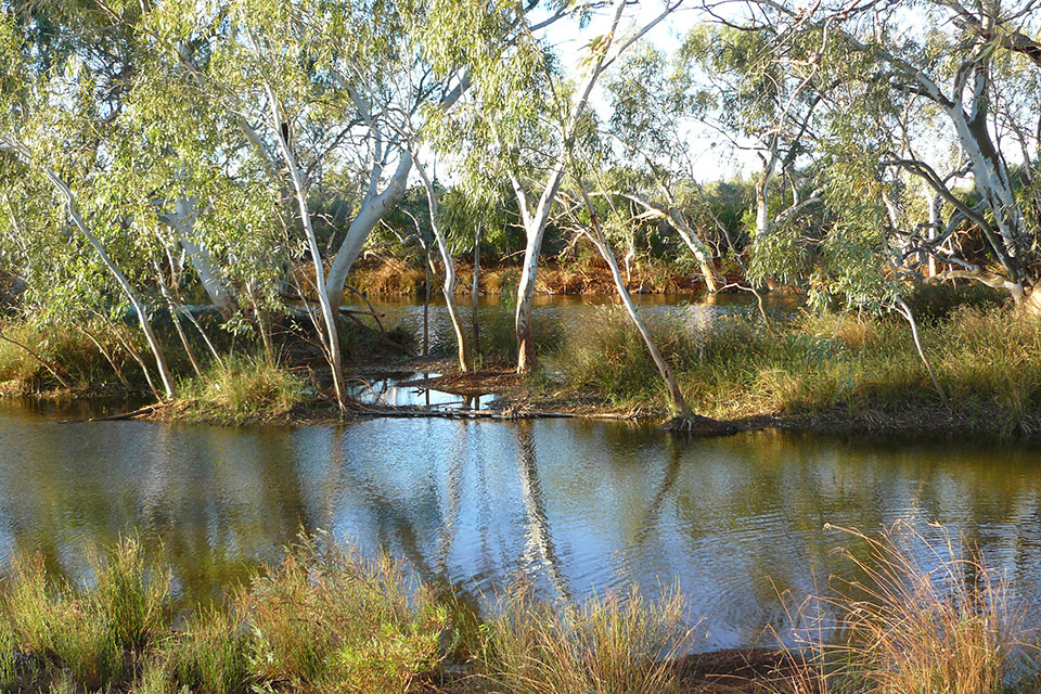 Waterhole near Burringurrah, Mount Augustus (photographer David Blood)