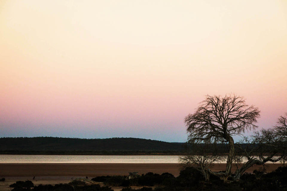 Pink sky at ex Warriedar along the Tallering Botanical Trail (photographer Glenn Campbell)