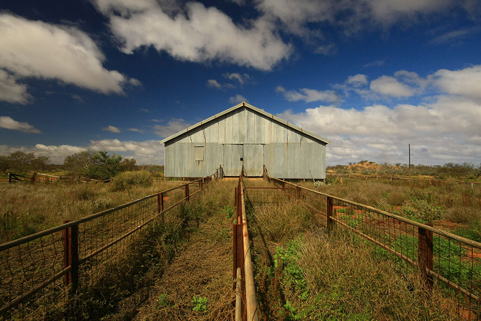 An old shearing shed in the Murchison (photographer David Blood)