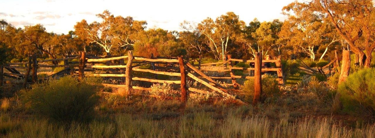 Auditor General report reveals Outback WA let down by years of policy failure