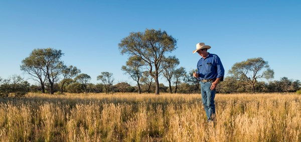 Great news for WA pastoralists with carbon farming windfall
