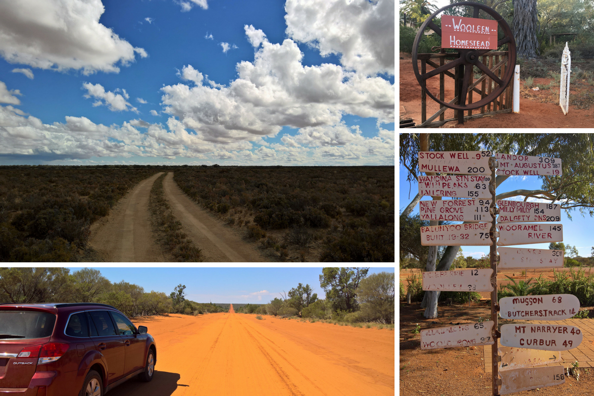 Wooleen_road_trip_collage.jpg
