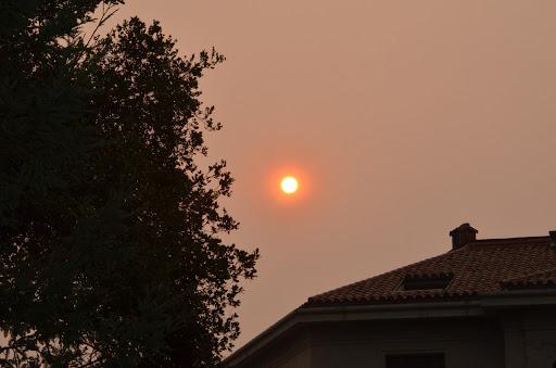 Ellen_Van_Bever_CA_Fires_SmokeHaze.jpg