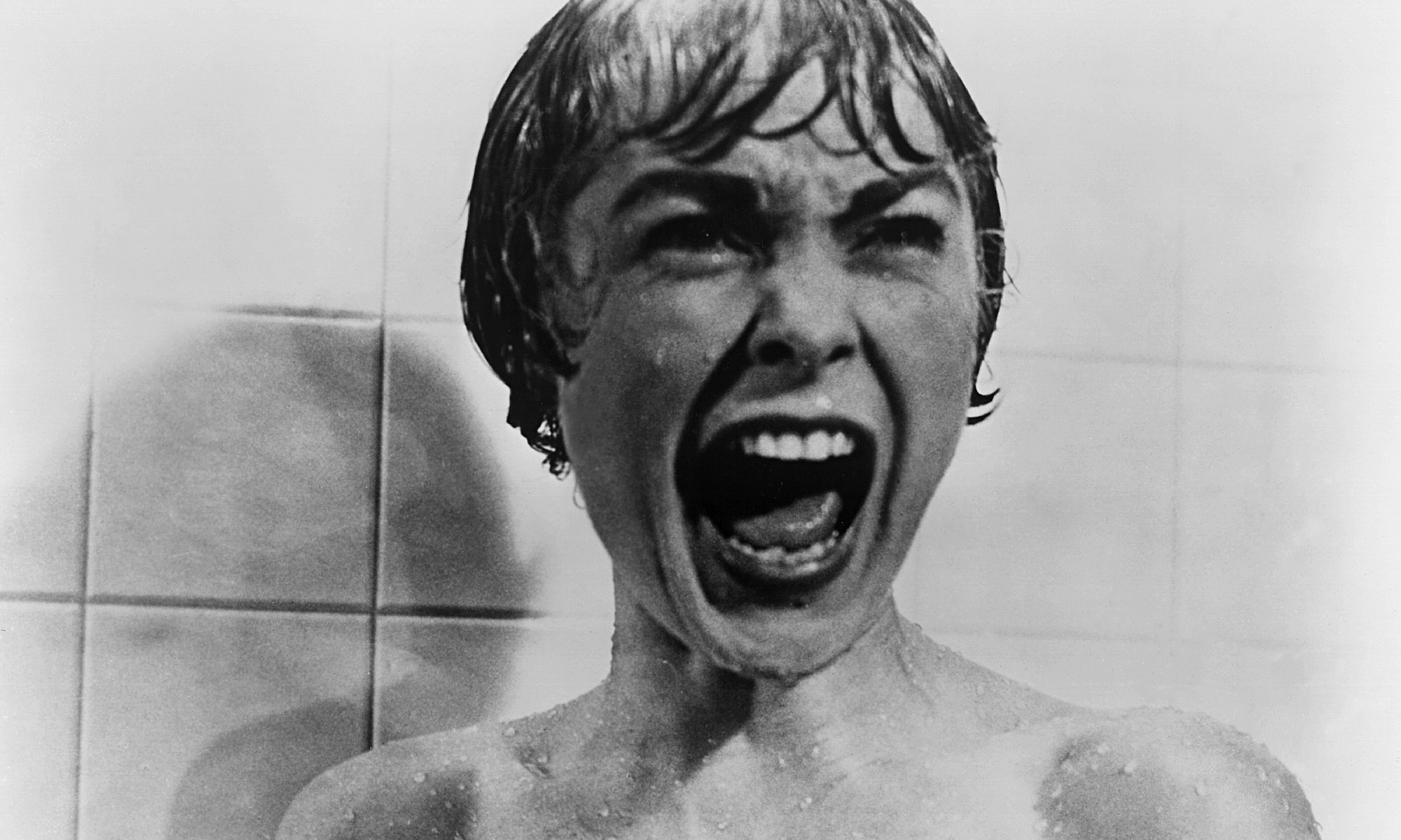 Janet-Leigh-in-Psycho-014.jpg