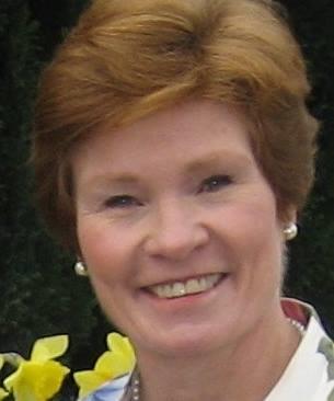 Ginger Gainer