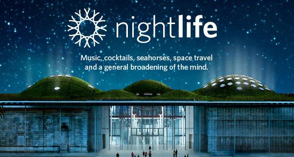 nightlife.jpg