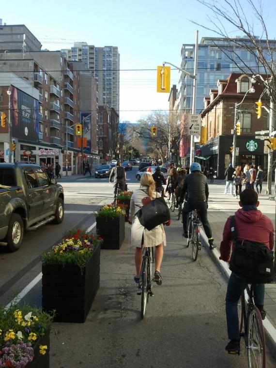 Toronto_plantedbikelane_(Streetsblog).jpeg