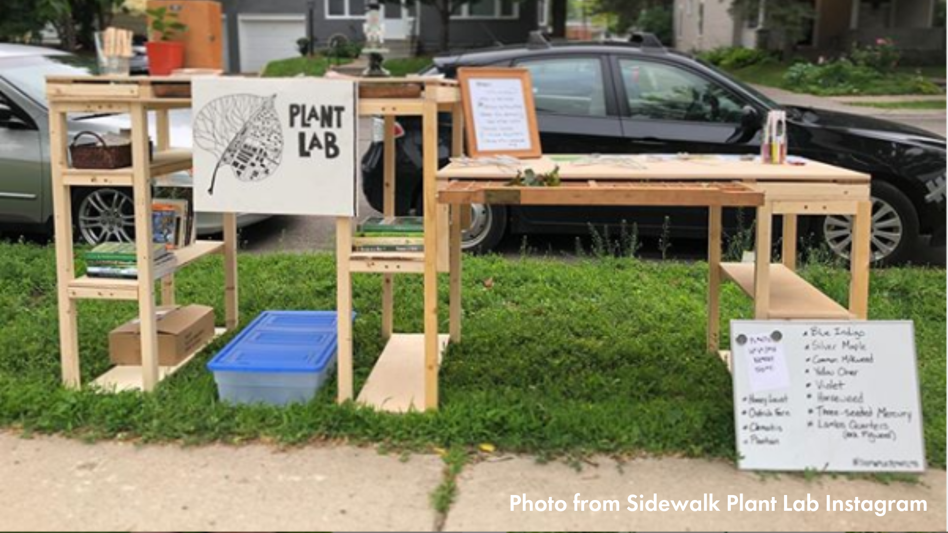 Sidewalk plant lab set up