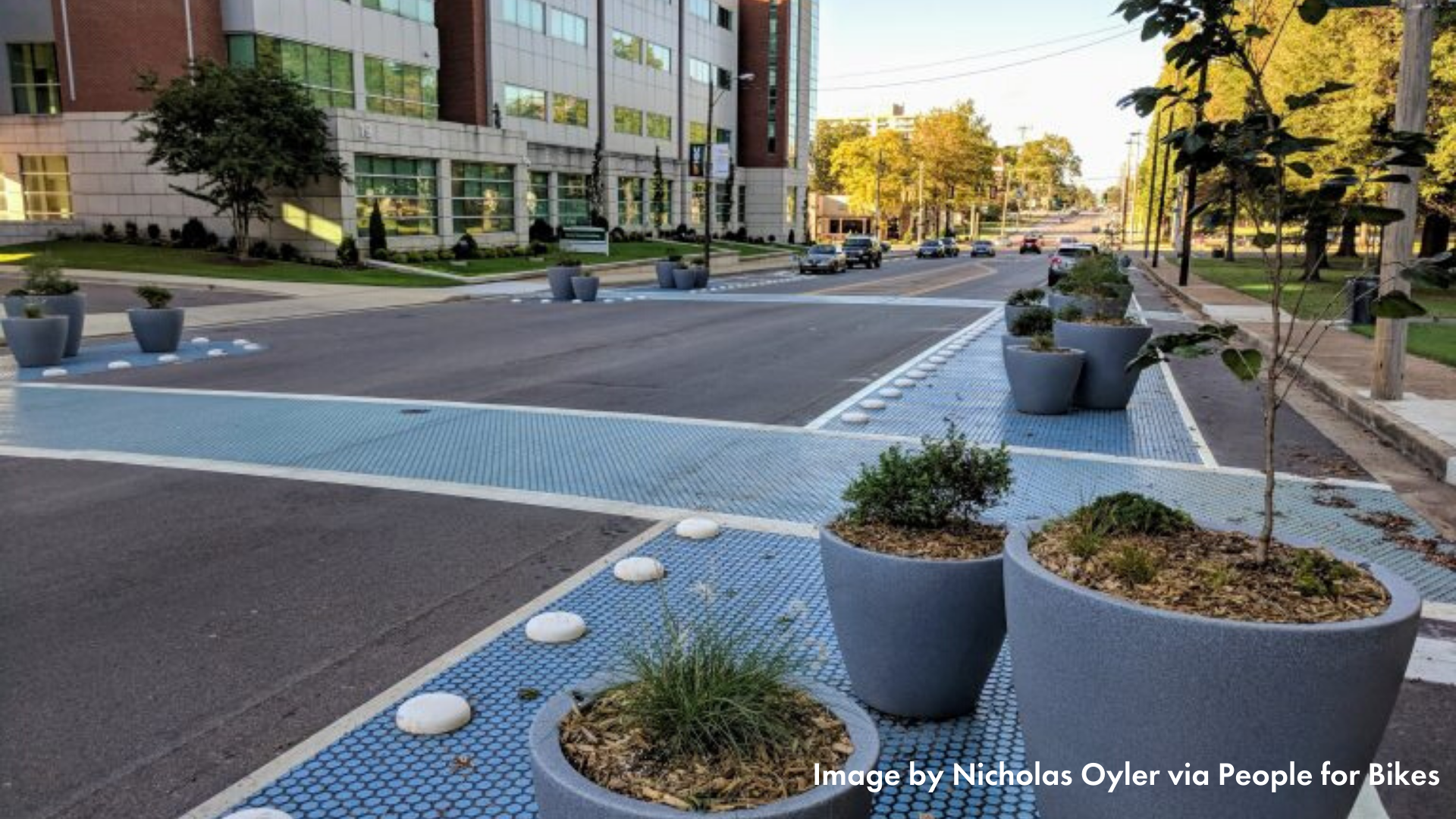 Planter protected bike lanes in Memphis, TN