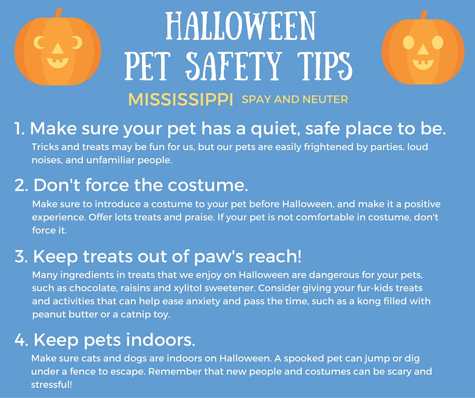Halloween_Pet_Safety_Tips.jpg