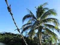 Image - Fiji.jpg