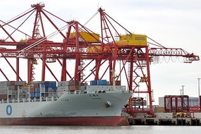 Image - Cranes_Port_Botany.jpg