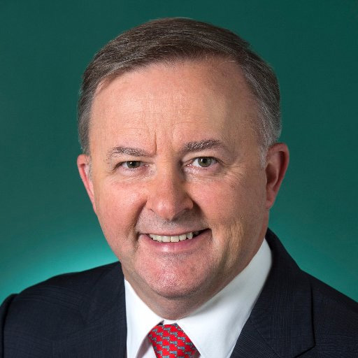 Hon Anthony Albanese (Labor) MP