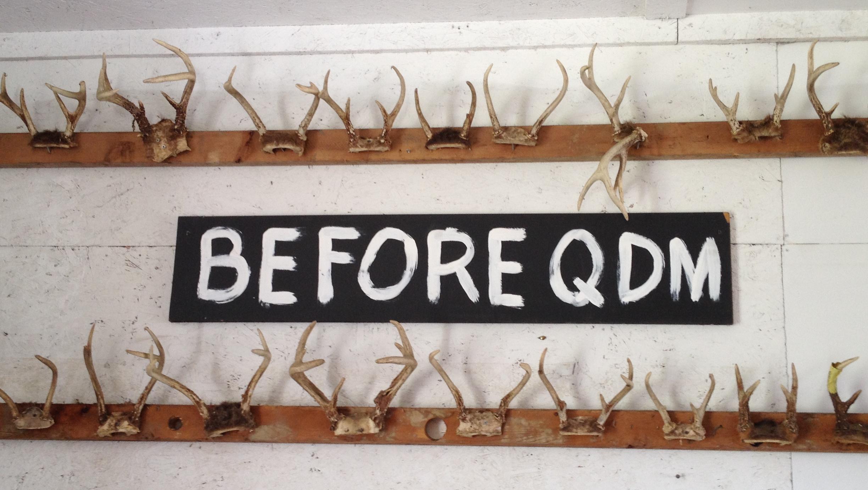 before_qdm.png