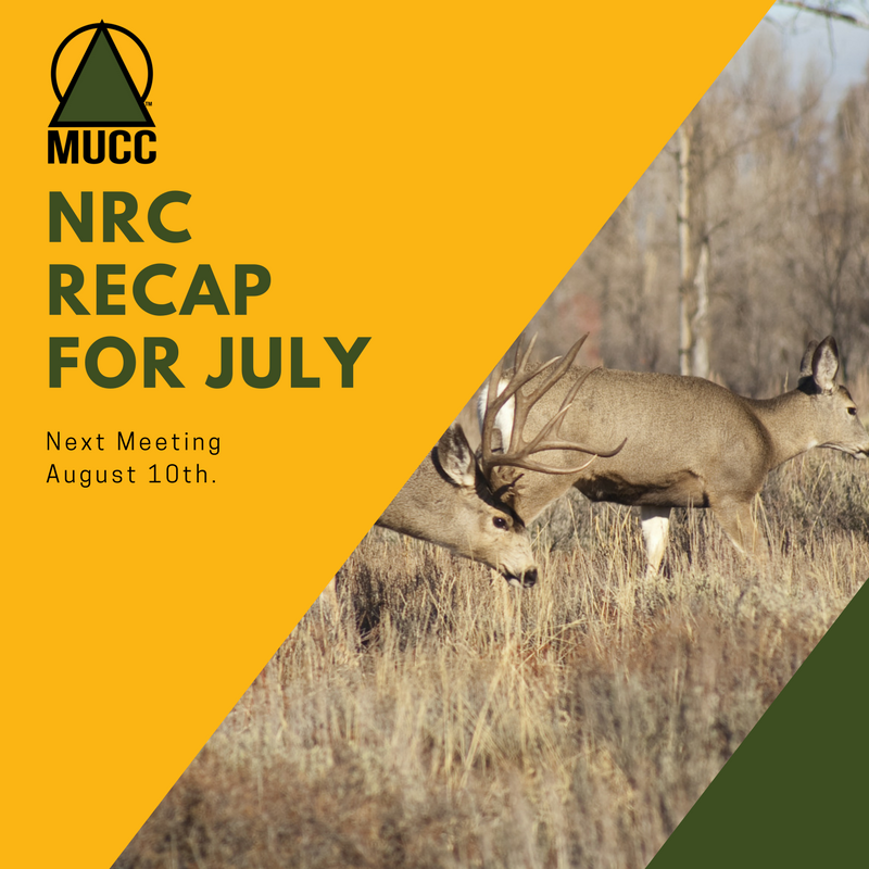 NRC_RECAP_FOR_JULY_(1).png