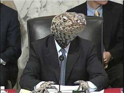lizard_in_a_suit.jpg