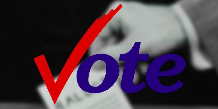 Vote-check.jpg