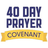 40DAY