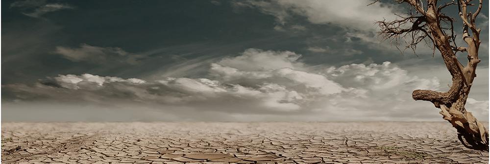 Desert-blog.png