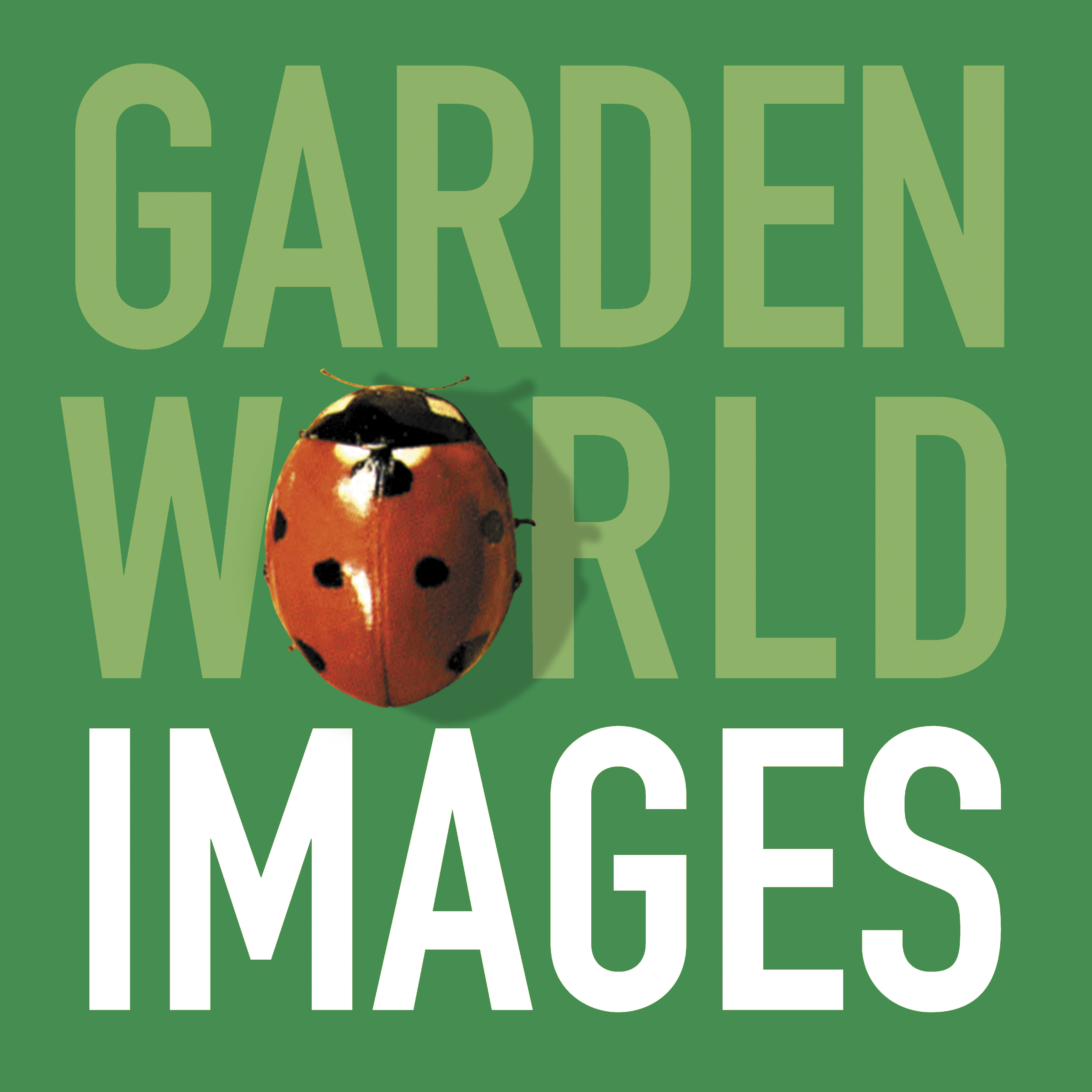 GWI_Logo_green.jpg