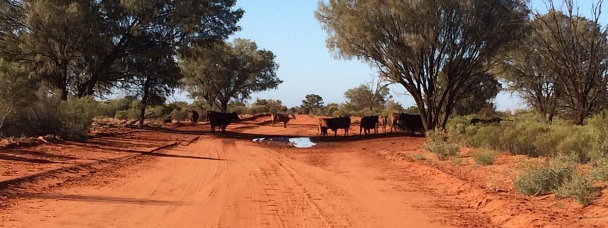 Kidman Property to remain in Australian hands