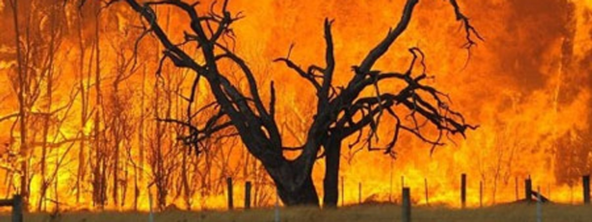 Fire season strikes with force