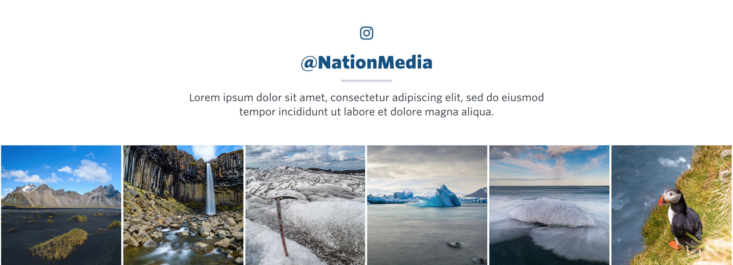 NationBuilder Content Block Module: Instagram Feed