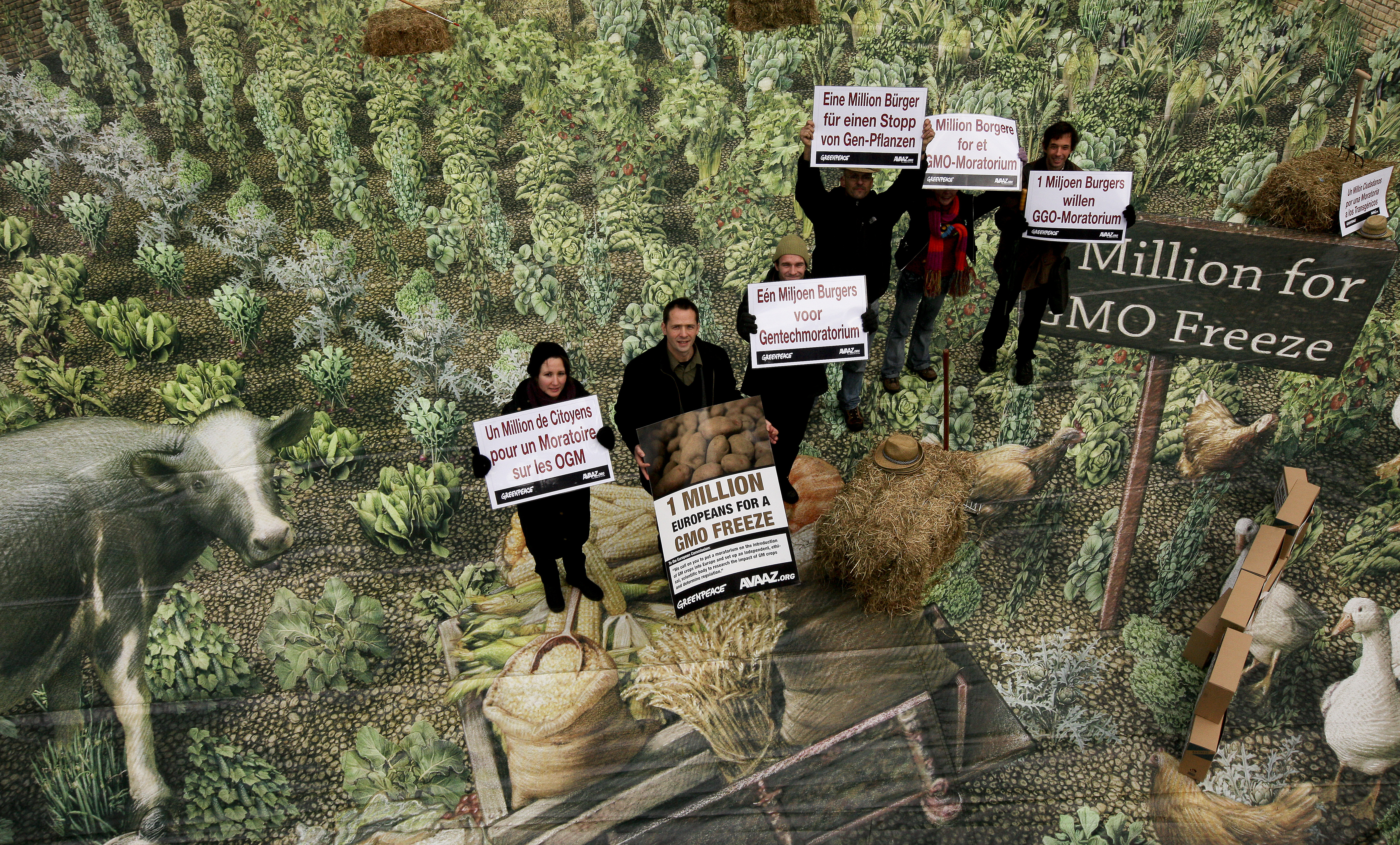 GMOFreeScotland.jpg