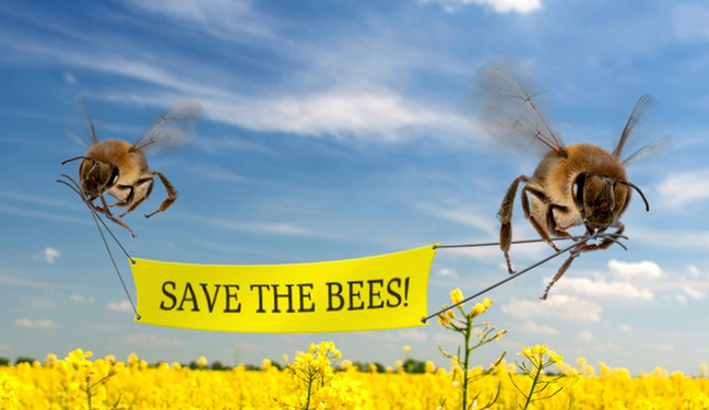 savebees.jpg
