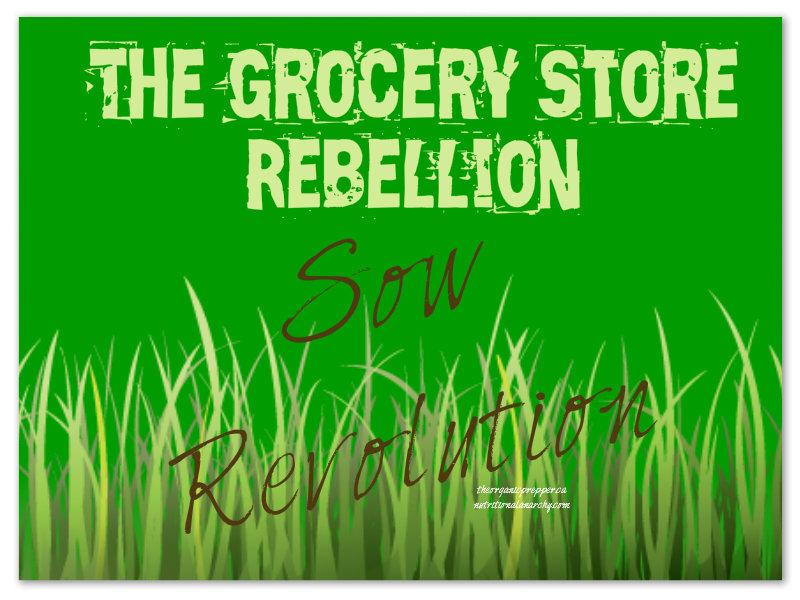 GroceryStoreRebellion.jpg