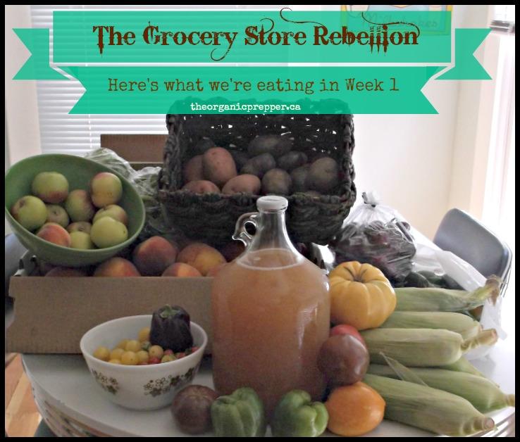 GroceryStoreRebellionWeek1.jpg