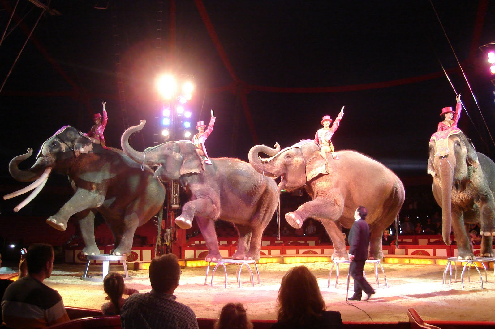 CircusAnimalsBanned92015.jpg