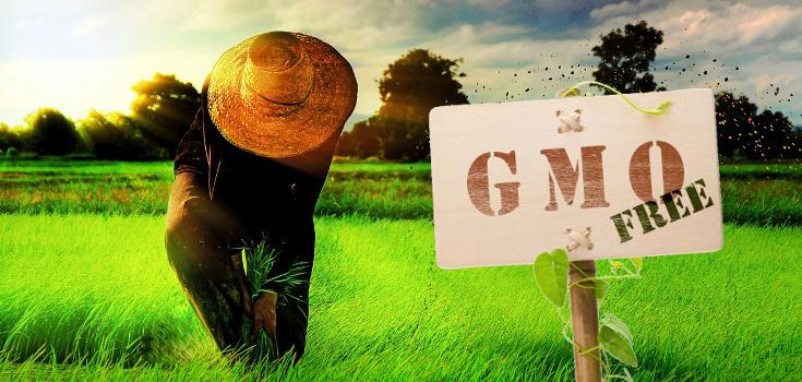GMOFeedWorld.png