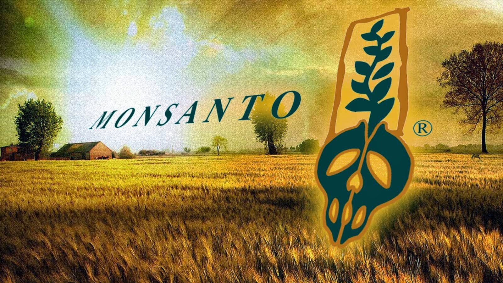 MonsantoFutureinQuestion.jpg